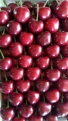 这是一张关于美早樱桃 26-28mm 15-18g的产品图片