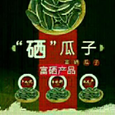 内蒙古自治区巴彦淖尔市临河区363葵瓜子 袋装