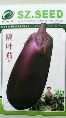 河南省郑州市惠济区茄子种子 杂交种 ≥98% ≥95%