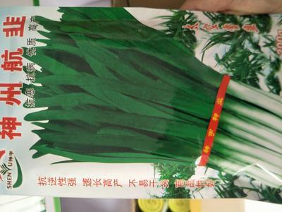河南省郑州市惠济区韭菜种子 袋装