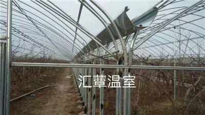 河北省沧州市泊头市种植大棚