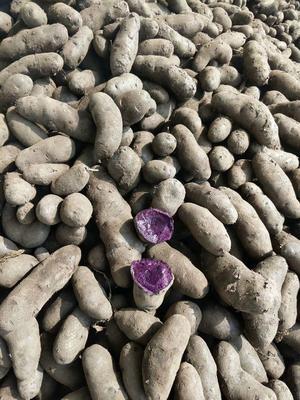 这是一张关于黑金刚土豆 3两以上的产品图片