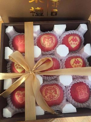 这是一张关于红富士苹果 85mm以上 条红 光果的产品图片