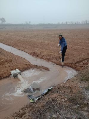 这是一张关于水浇地 转让 20~30年 100~500亩的产品图片