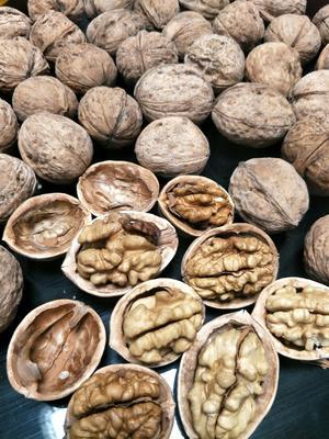 这是一张关于新疆核桃的产品图片