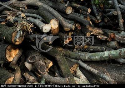这是一张关于干杂木的产品图片