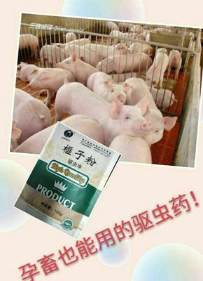 这是一张关于蛋白质饲料的产品图片