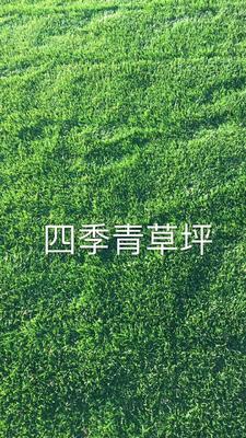 云南省昆明市安宁市四季青