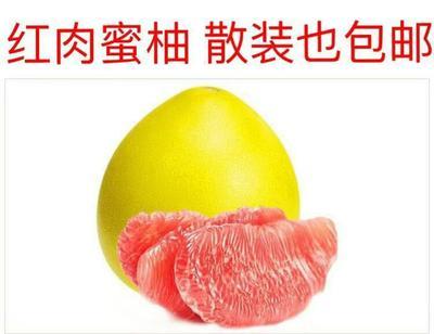 这是一张关于红心柚  统货1.5-4.5斤的产品图片
