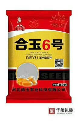 河北省沧州市献县玉米种子 三交种 ≥98% ≥99% ≥95% ≤7%