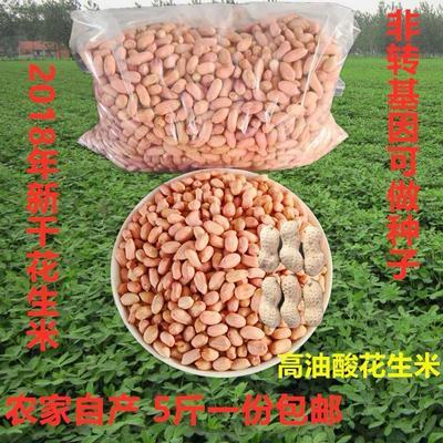 山东省威海市文登区小花生 花生米 干货