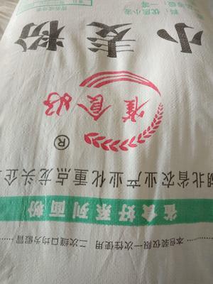 湖北省荆门市京山县天然面粉 中筋面粉