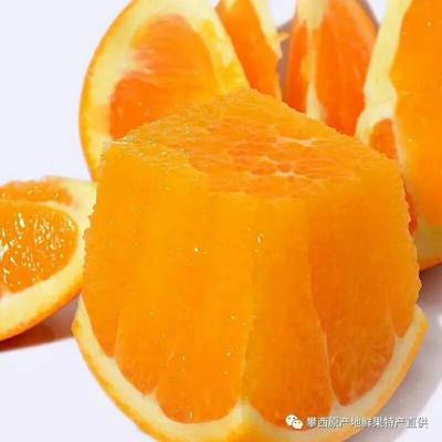 这是一张关于雷波脐橙 60 - 65mm 4-8两的产品图片