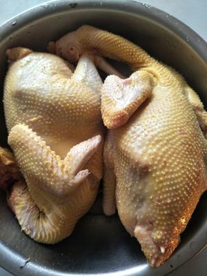 这是一张关于阉鸡 4-5斤 公的产品图片
