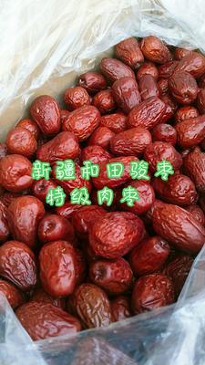 这是一张关于和田大枣  特级 肉枣的产品图片