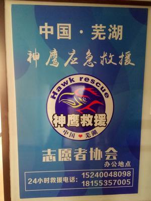 安徽省芜湖市三山区蜂房  马蜂窝