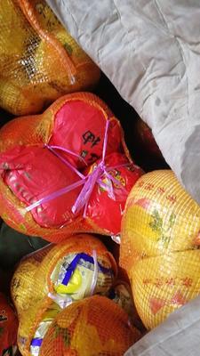 内蒙古自治区呼和浩特市回民区红心柚 4斤以上