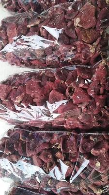 福建省龙岩市长汀县红菇干 袋装 1年以上