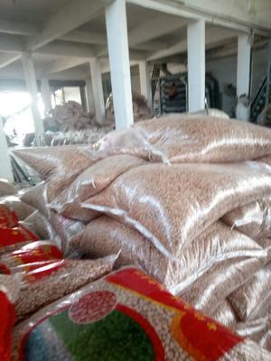 安徽省合肥市庐阳区白沙系列花生 干货 花生米