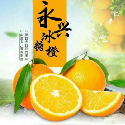这是一张关于永兴冰糖橙 65 - 70mm 4-8两的产品图片