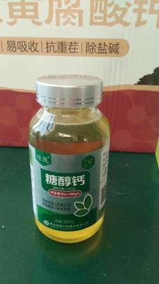 这是一张关于糖醇钙的产品图片
