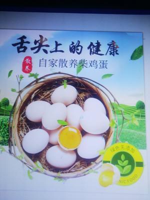 河南省信阳市罗山县土鸡蛋 食用 箱装