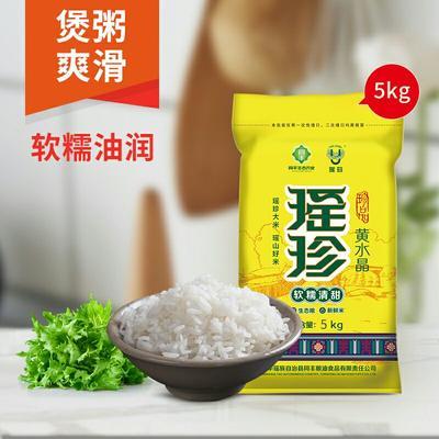 这是一张关于油粘米  一等品 晚稻 籼米 瑶珍黄水晶米的产品图片