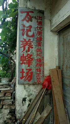 广东省梅州市梅江区土蜂蜜 桶装 2年以上 98%