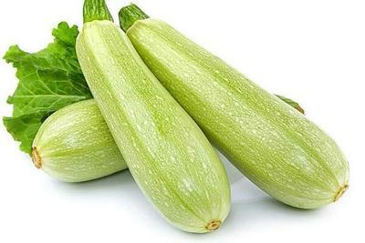 山西省长治市长子县法拉利西葫芦 0.5斤~1斤