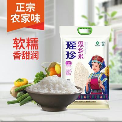 这是一张关于高山生态大米  一等品 晚稻 籼米 思乡米高山生态大米的产品图片