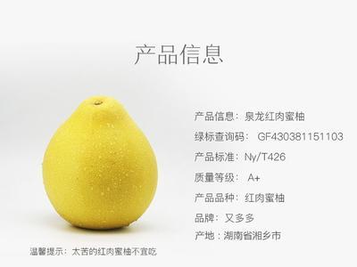 这是一张关于红肉蜜柚 1.5斤以上的产品图片