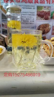 山东省济宁市泗水县黄菊