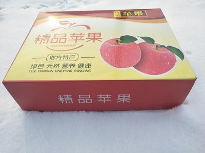 这是一张关于宫崎富士 75mm以上 全红 纸袋的产品图片