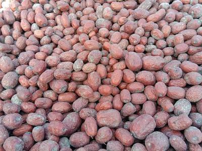 新疆维吾尔自治区喀什地区麦盖提县若羌灰枣 统货