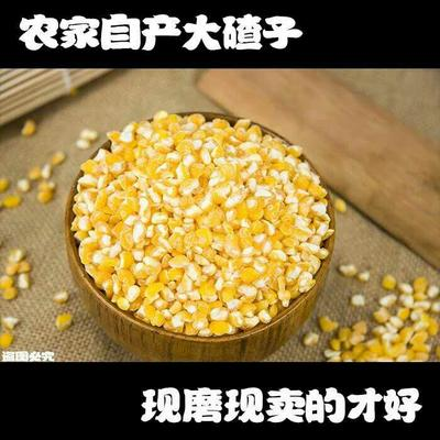 这是一张关于花糯6号玉米粒 净货 水份17%-20%的产品图片