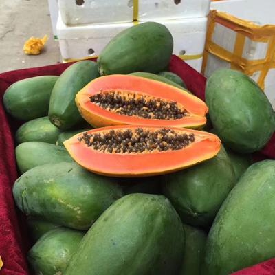海南省海口市琼山区红心木瓜 1 - 1.5斤