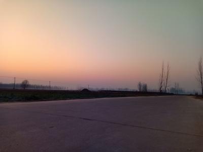 山东省济宁市梁山县太玉339玉米粒 杂质很少 水份17%-20%