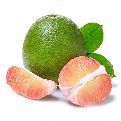 广西壮族自治区崇左市宁明县泰国青柚 2斤以上