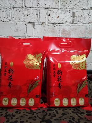 黑龙江省鸡西市鸡东县 稻花香大米 一等品 晚稻 粳米