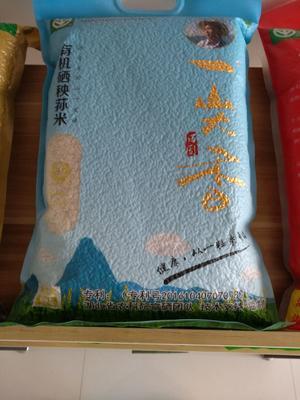 湖北省黄冈市武穴市有机富硒米 一等品 再生稻 粳米