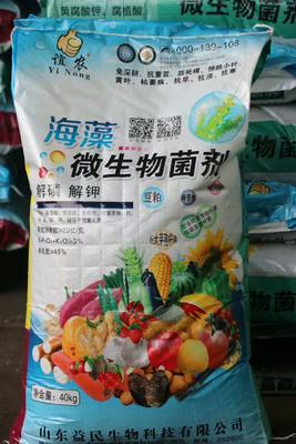 这是一张关于微生物有机肥的产品图片
