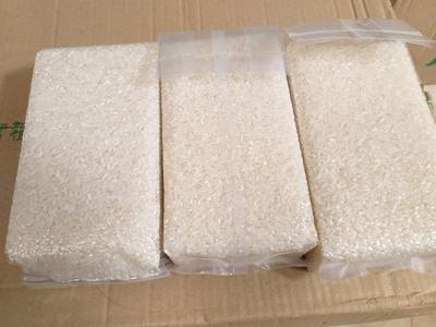黑龙江省哈尔滨市五常市长粒香大米 晚稻 粳米 一等品
