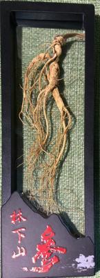 这是一张关于林下参人参 全须生晒参 盒装 整根的产品图片