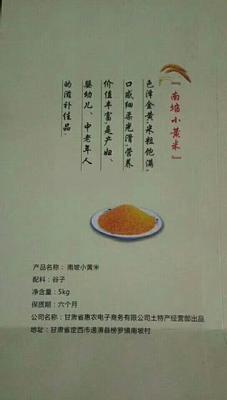 甘肃省定西市通渭县黄小米