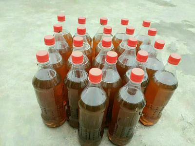 这是一张关于土蜂蜜 塑料瓶装 2年以上 90%以上的产品图片