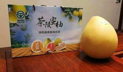 湖南省株洲市茶陵县蜜柚 3斤以上