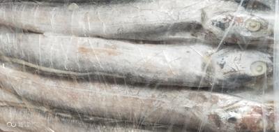 这是一张关于野生带鱼 野生 6公斤以上的产品图片