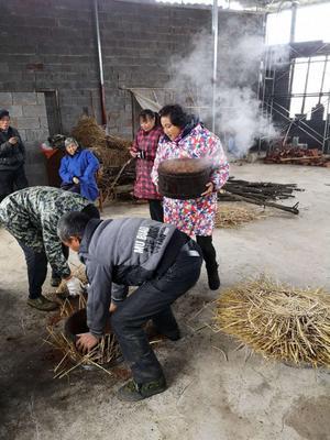 湖南省株洲市攸县现榨山茶油