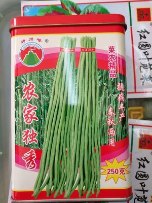 这是一张关于长青豆角种子  ≥90% 农家独秀的产品图片