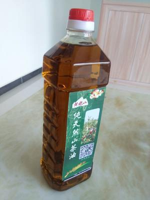 这是一张关于现榨山茶油的产品图片